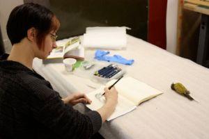 Melissa Washburn, visiting artist, 3-8-2013, 3